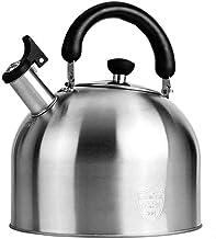 HJW Nuttige waterkoker metalen waterkoker voor camping anti-warm handvat spiegel gepolijst theepot grote capaciteit snel k...