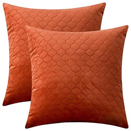 Rythome - Juego de 2 Fundas de Almohada Decorativas, cómodas Fundas de cojín Acolchadas de Terciopelo para sofá y Cama