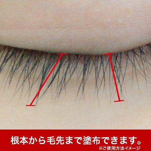 リバイブラッシュ6g[まつ毛美容液]日本製まつげ美容液人気ランキングまつ毛ケア目元ケア