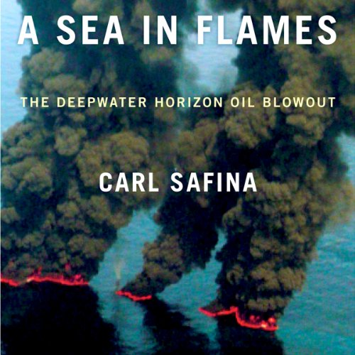 A Sea in Flames cover art