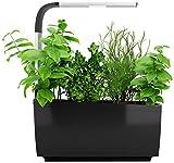 51YJ iZT5TL. SL160  - Nano Garden, Mini Jardinière Connectée pour Faire Pousser Facilement les Plantes Chez Vous - Plantes, Nature, Maison, High Tech, Decoration, Amazon