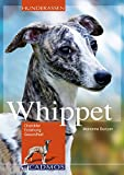 Whippet: Charakter, Erziehung und Gesundheit (Cadmos Hunderassen) - Marianne Bunyan