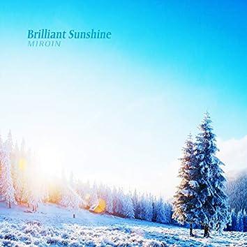 Brilliant Sunshine