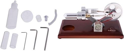 Tubayia Stirling Motor Generator Modell Labor Experimentelle Lehrmittel Physik P gogisches Spielzeug Lernspielzeug