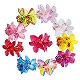 Clip de Pelo Multicolor Hawaianas de Flores de Doble Orquídea Pelo Clips para Lady Mujeres Niñas Wedding Party Nupcial Beach Suministros de Decoración 10 Piezas