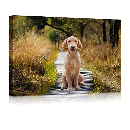 """Price comparison product image HIWORD Custom Canvas Prints with Your Photos for Pet / Animal,  Personalized Canvas Pictures for Wall to Print Framed (8"""" W x 6"""" H)"""