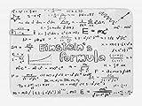 Lunarable Science Bath Mat, Geek Nerd Culture Handwriting Style Physics Mathematics Formula Educational, Plush Bathroom Decor Mat with Non Slip Backing, 29.5' X 17.5', White Black