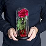 gifts for mom grandma women from daughter son,enchanted red silk rose with led light for mother's day valentine's day for her women birthday