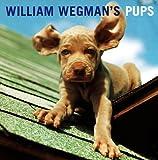 William Wegman's Pups