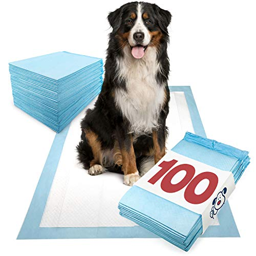 ValuePad Puppy Pads, Extra Large 28x36 Inch, 100 Count - Economy Training Pads for Dogs, Leak Proof 5-Layer Design