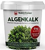 Veddelholzer 6 kg Bio Algenkalk 100% reines Pulver aus Meeresalgen aus dem Atlantik stärkt Widerstandskraft & Regeneration des Buchsbaum beim Buchsbaumzünsler Buchsbaumdünger Naturdünger Spritzmittel