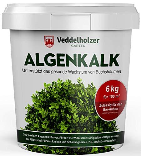Winterpreis 6 kg Bio Algenkalk 100% reines Pulver aus Meeresalgen aus dem Atlantik stärkt Widerstandskraft & Regeneration des Buchsbaum beim Buchsbaumzünsler Buchsbaumdünger Naturdünger Spritzmittel