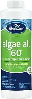 BioGuard Algae All 60 - Quart