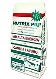 Nutrix más pienso Secche Alta energía–10000gr