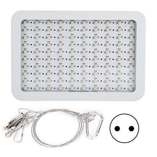 Dpofirs Grow Light para Plantas de Interior, lámparas de Cultivo de Plantas con Ventilador, bajo Consumo de energía para jardín, Invernadero(85-265V, Transl)