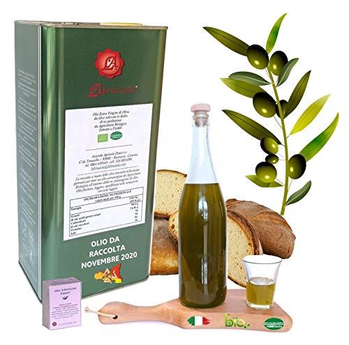 OLIO DI OLIVA 5 litri lt EXTRAVERGINE Biologico Bio 100% Italiano Italia da Olive siciliane sicilia ESTRATTO A FREDDO in LATTINA