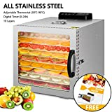 Food Dehydrator, 10 Layers Commercial Stainless Steel Fruit Dehydrator, 1000W Professional Adjustable Temperature Control and 0~24 Hours Digital Timer Food Dryer Household with Glass Window and Recipe
