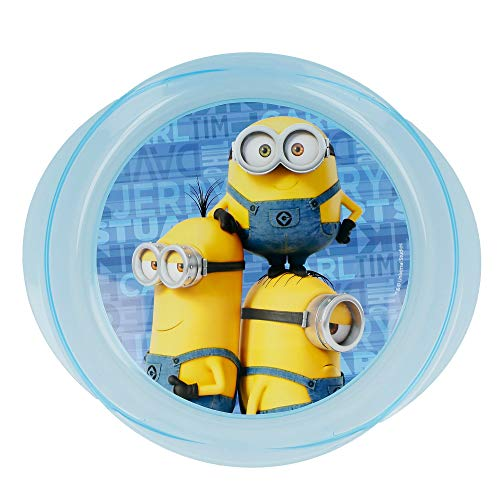 Stor Assiette Micro Easy Minions Rules