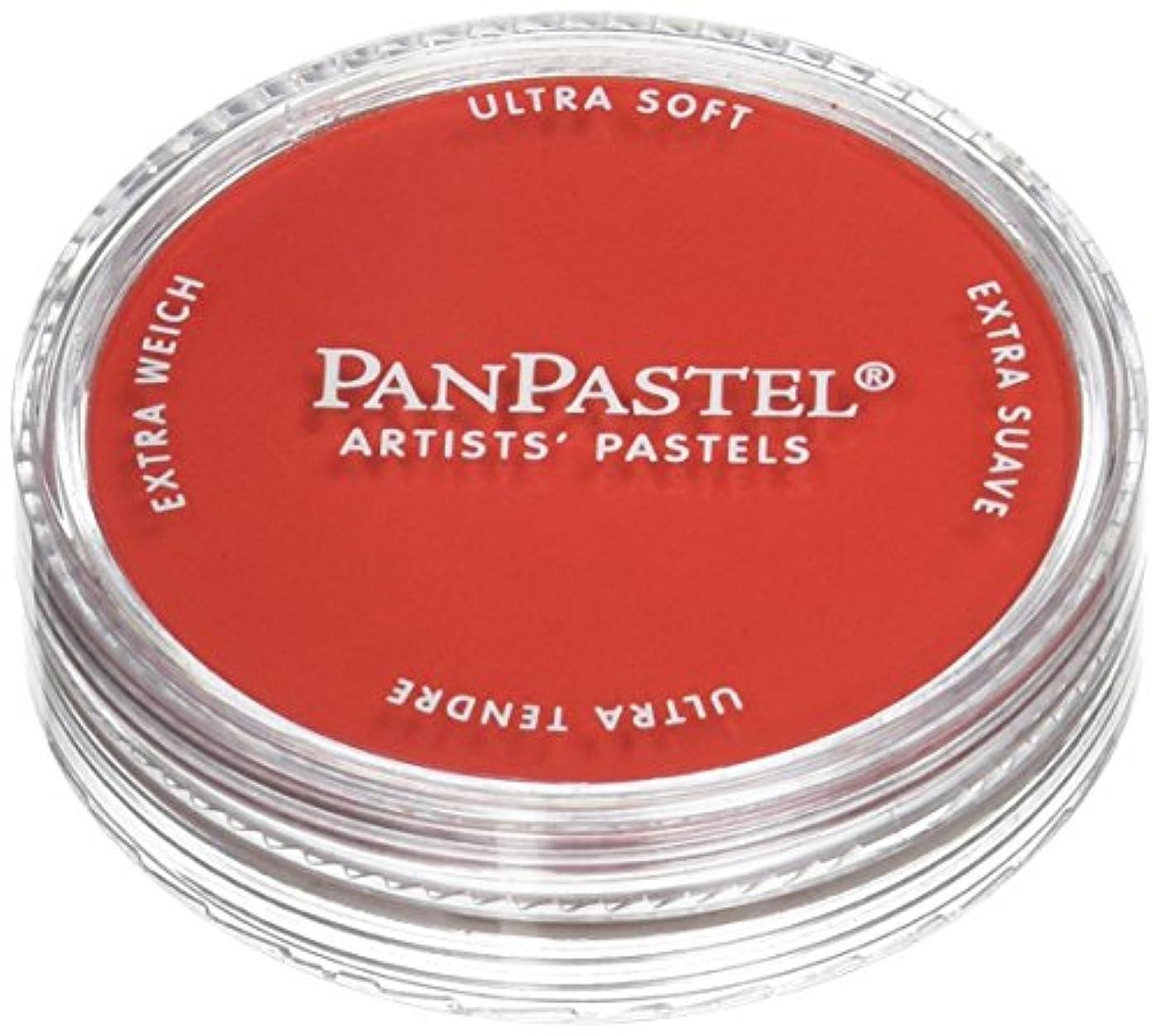 PanPastel Ultra Soft Artist Pastel, Permanent Red