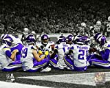 The Poster Corp Minnesota Vikings 2017 Touchdown