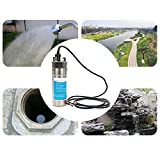 InLoveArts Stainless Steel Submersible Pump, 3.2GPM 4' Deep Well Pump Submersible Pump Solar Water Pump for...