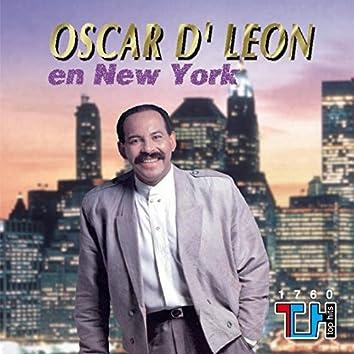 Oscar D'leon En New York