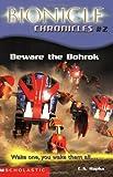 Beware the Bohrok (Bionicle Chronicles)