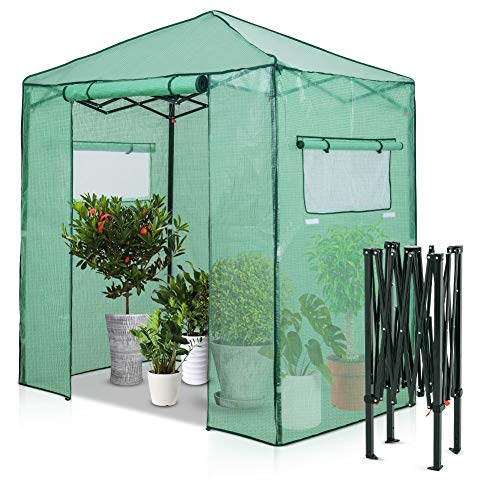 EAGLE PEAK 1.8m x 1.2m Portable Walk-in Greenhouse Instant Pop-up Fast Setup Indoor Outdoor Plant Gardening Green House Canopy, Front Roll-up Zipper Entry Doors and Roll-up Side Windows