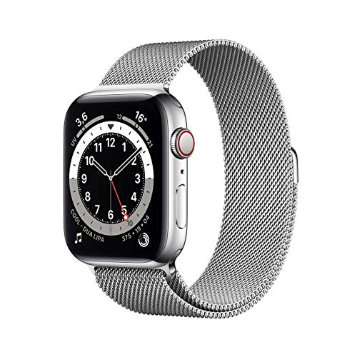 Apple Watch Series 6 (GPS + Cellular, 44 mm) Cassa in acciaio inossidabile color argento con Loop Cassa in maglia milanese color argento