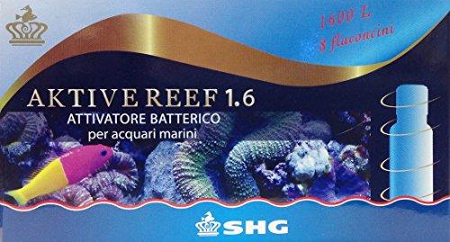 Aktive Reef 1.6 attivatore batterico SHG