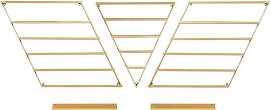 6 Tier Metalen Nagellak Display Organizer Wandrek Houder, Essentiële Olie Combo Opbergrek, Gebruikt om Nagellak, Cosmetic...