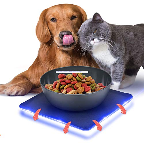 Non Skid Pet Bowl Set - No Flip Dog Bowl Dog Spill Proof Mat Set - Interlocking Non Skid Pet Puppy Cat Dog Bowl With Mat - Twisty Dish Food/Water Bowl for Mess Free Feeding - SereneLife SLTDG69 (Gray)