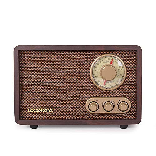 LoopTone FM AM Radio