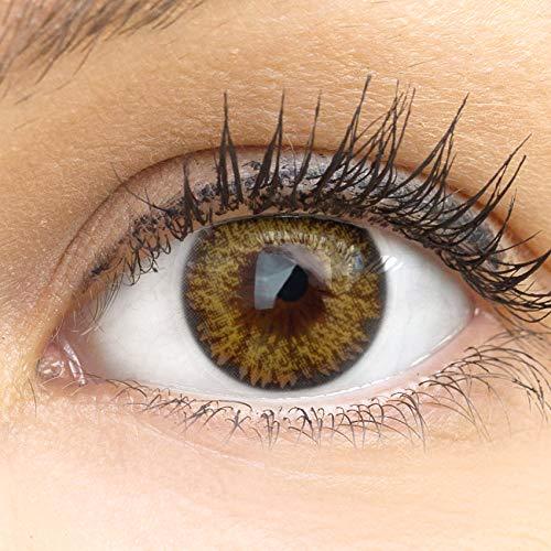 GLAMLENS lentillas de color marrones Palermo Brown + contenedor. 1 par (2 piezas) - 90 Días - Sin Graduación - 0.00 dioptrías - blandos - Lentes de contacto marrón de hidrogel de silicona