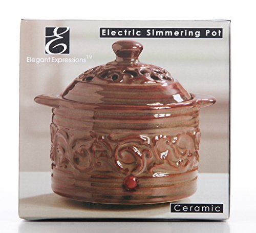 Hosley 5.12' High Brown Electric Potpourri Warmer DIPOO Ideal Gift for Wedding, Special Occasions, Spa, Aromatherapy, Reiki, Meditation Settings and Home Office P1