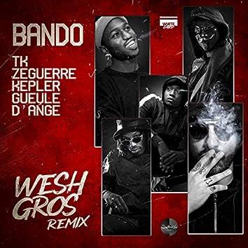 Wesh Gros (Remix)