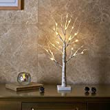 """Padoo 24"""" 2FT 24LT Pre-lit Birch Tree Battery Powered Timer Warm White LED for Home Decor, Wedding"""