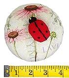 PeavyTailor Emery Pin Cushion 10oz Extra Large Keep Needles Clean and Sharp Needle Storage Organizer - Ladybug...