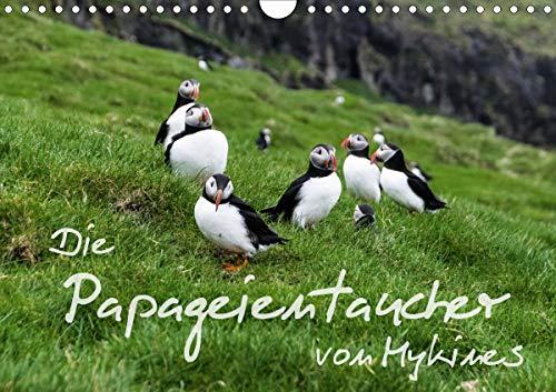 Die Papageientaucher von Mykines (Wandkalender 2021 DIN A4 quer)