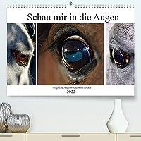 Schau mir in die Augen - magische Augenblicke mit Pferden (Premium, hochwertiger DIN A2 Wandkalender 2022, Kunstdruck in Hochglanz): Pferdeaugen sind ausdrucksstark, Fenster zur Seele (Monatskalender, 14 Seiten )