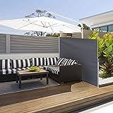 sogesfurniture Tende da Veranda,Tende da Sole per Esterno,Tende da Sole paravento Laterale frangivento Estensibile,300x160cm,Grey BHEU-MH038-316G