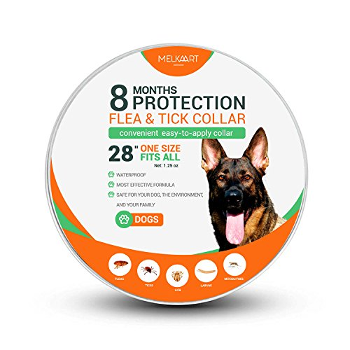 Melkaart Collar for Dogs - 8 Months Protection