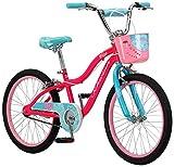 Schwinn Girls Bikes Review and Comparison