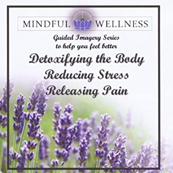 Mindful Wellness Guided Imagery Detoxify the Body, Releasing Pain and Reducing Stress 3 Part Imagery