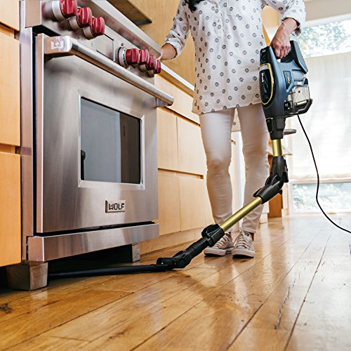 Shark Flex DuoClean Ultra-Light Upright Corded Vacuum for Pet, Carpet and Hard Floor Cleaning with Lift-Away Hand Vacuum (HV391), Gray/Gold
