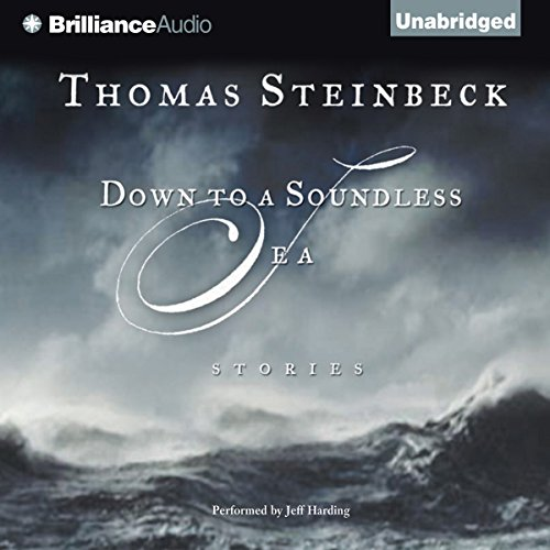Down to a Soundless Sea audiobook cover art
