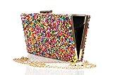 Complementos La Monsita Bolso cartera de fiesta multicolor con cadena