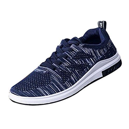 Schuhe Herren Sneaker, Holeider Sport Freizeit Schuhe Mesh Laufschuhe Turnschuhe Freizeitschuhe Leichte Bequeme Sportschuhe für Männer Outdoor