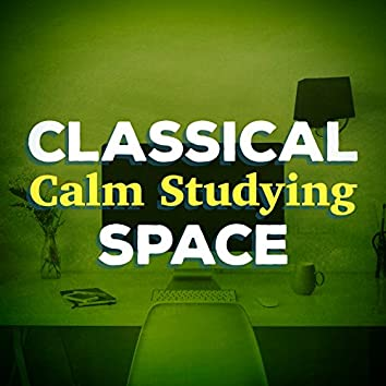 Classical Calm Studying Space
