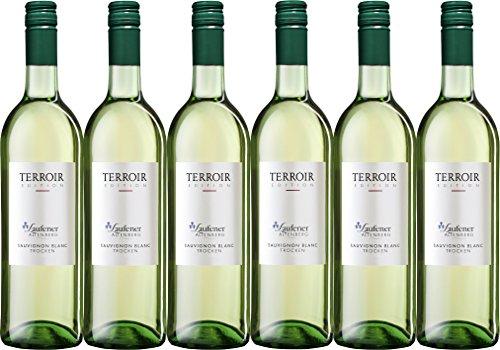 Winzerkeller Laufener Altenberg Edition Terroir Sauvignon Blanc QW trocken (6 x 0,75L)